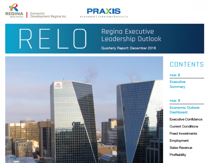 The end of 2018 observed a decline of the Executive Confidence Index; however, executive respondents remain resilient and positive for the year ahead. Read about it in the latest Regina Executive Leadership Outlook